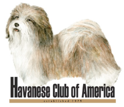 Havanese Club of America Arizona