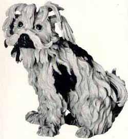 History Origin Havanese Dogs Havana Silk Dogs   R'Gang ...